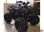 Vand ATV AGUSTA Grizzly 125cc, Casca Bonus, Import Germania